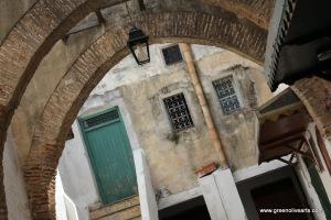 Tetouan – medina arch –  Carleigh Boyd