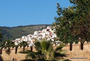 Tetouan – medina hill
