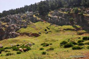 Tetouan – mt. Boanan pasture